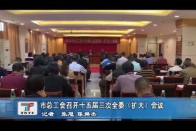 市总工会召开十五届三次全委(扩大)会议