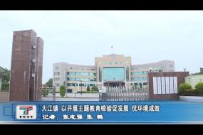 大江镇 以开展主题教育检验促发展 优环境成效