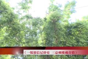 2020.8.1 台山周刊 一纸银信记侨史 三益碉楼藏真情
