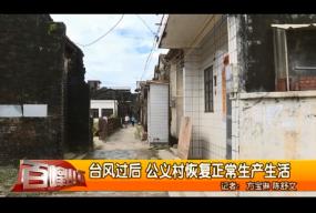 台风过后 公义村恢复正常生产生活