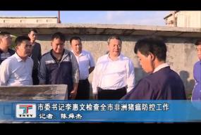 李惠文检查全市非洲猪瘟防控工作