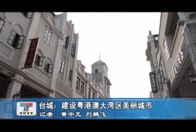 台城:建设粤港澳大湾区美丽城市