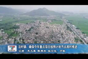 汶村镇:确保今年重点项目按照计划节点准时推进