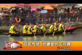 百年传统 池塘里的龙舟赛