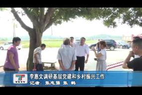 李惠文调研基层党建和乡村振兴工作