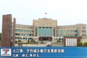 大江镇:开创城乡融合发展新面貌