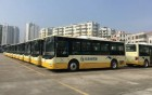 803公交线路延伸到新行政服务中心 方便群众出行
