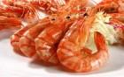 澳洲研究发现:虾壳能够对抗超级细菌