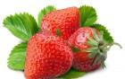 """冬天到了!和营养师学学吃""""冬草莓"""""""
