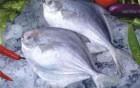 常吃深海鱼 会有这3个意想不到的好处
