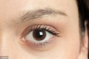 """护好眼睛靠""""三养"""""""
