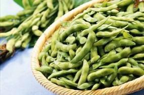 豆腐、毛豆、大豆 豆制品家族营养解析!