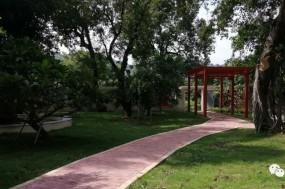 都斛镇古榕树公园,古树已逾百年,你去打卡了吗?