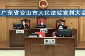 台山丽人医院恶势力集团犯罪系列案两主犯今日宣判