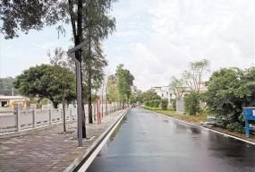 江门人才岛上的乡村振兴故事:潮连卢湾村变身绿岛水乡