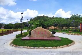 大江镇:打造特色亮点激发基层党建新活力