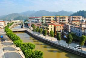 赤溪镇:发挥湾区优势,全力开创高质量发展新局面