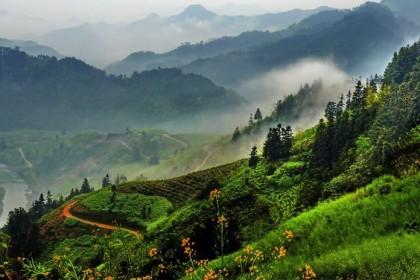 台山北峰山森林公园攻略