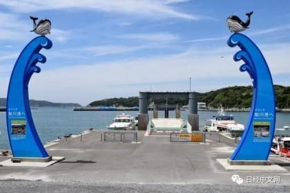 """宫城县牡鹿半岛的石卷市鮎川地区,日本""""鲸之町""""对商业捕鲸的期待与不安"""
