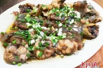 台山人餐桌上常见这种鱼,煮法多样 价格平民!