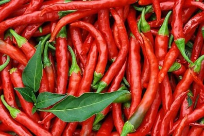 吃辣椒或能降低死亡风险