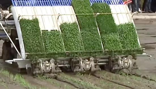 无人驾驶拖拉机开进中国农田 外国网友:绝妙啊