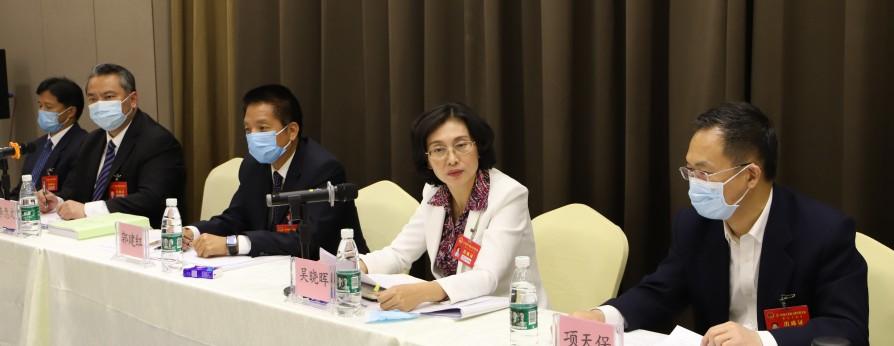 吴晓晖参加台山代表团审议