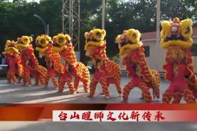 2020.12.19 台山周刊 台山醒狮文化新传承