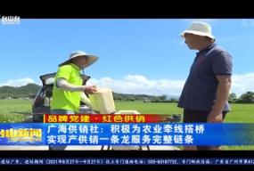 广海供销社:积极为农业牵线搭桥 实现产供销一条龙服务完整链条