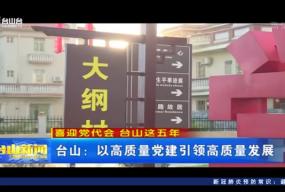 台山:以高质量党建引领高质量发展