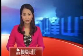 粤曲粤剧表演专场为首届广侨文化艺术节画上圆满句号