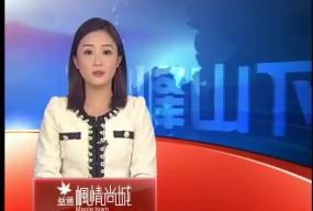 台山同学网网友欢聚 庆祝网站成立12周年