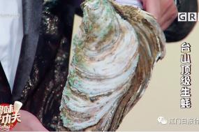 台山蚝又出名了!登上广东卫视