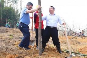 市领导带头植树 为金星湖添新绿