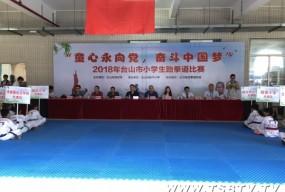 我市第一届小学生跆拳道比赛开赛