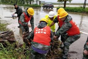 广海镇:救灾复产工作快速有序进行中