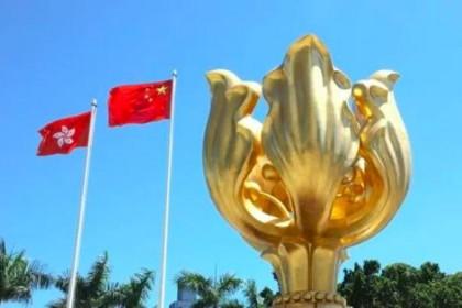 海外华侨华人支持完善香港选举制度 认为有利于确保香港长期繁荣稳定