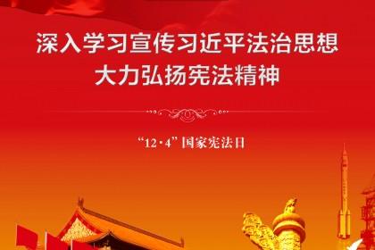 国家宪法日公益广告